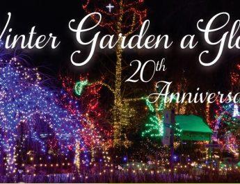 Winter Garden aGlow