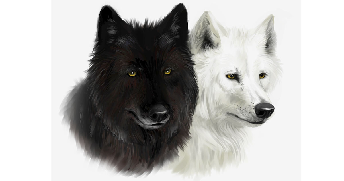 A Tale of Two Wolves