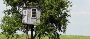 Treehouse for Kids Too