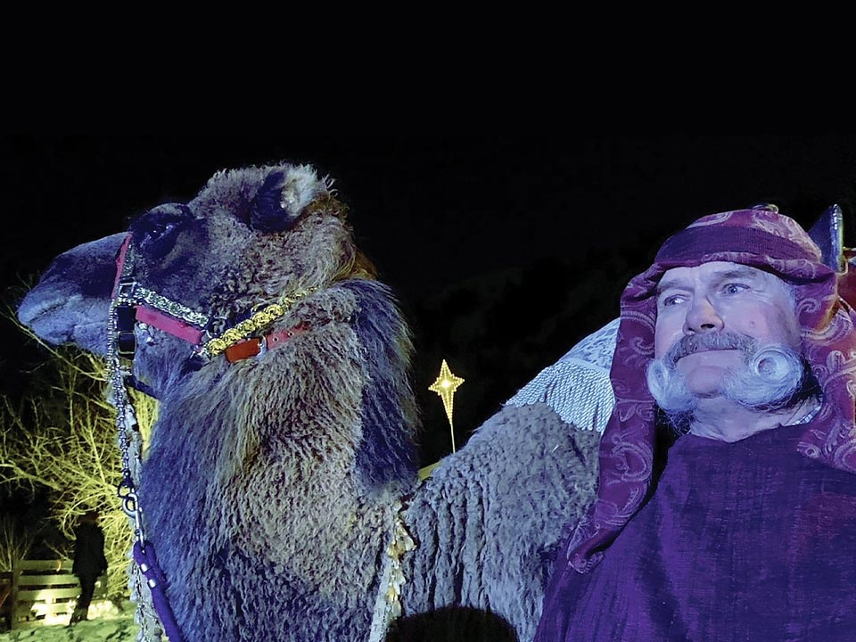 Audience and Animals Share Peace and Reverence at Live Nativities