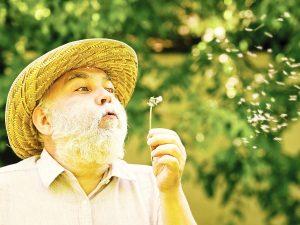 Photo of senior man blowing a dandelion
