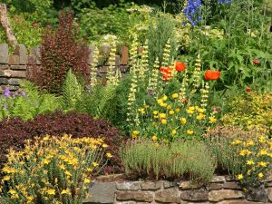 Photo of a pollinator gardener garden